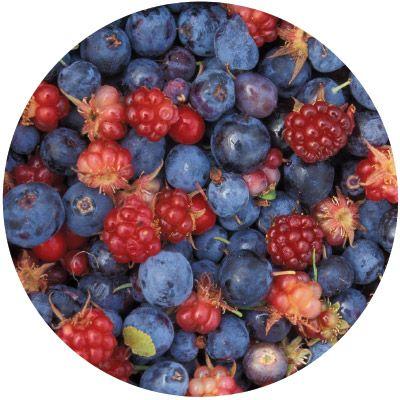 Чай «Лесные ягоды» 20 пакетиков по 4 г. 6 шт. в гофрокоробе